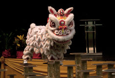 Lion dance competition Stock Photography