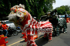 Lion dance Royalty Free Stock Image