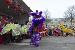 Lion dance demonstration Royalty Free Stock Photos