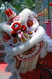 Lion dance festival stock photos