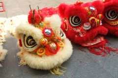 Lion dance of festival. The lucky symbol of fortune and happiness Stock Photos