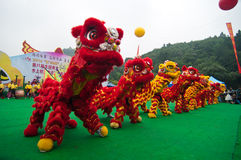 Lion dance Royalty Free Stock Image