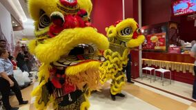 A lion dance held at a shopping mall to celebrate upcoming Chinese New Year.