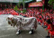 Lion dance. Lions dance enliven chinese new year at a school in the city of Solo, Central Java, Indonesia Stock Photo
