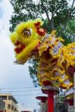 Lion dance on the Meihuaquan. Man doing lion dance on Meihuaquan in the most important festival in Vietnam Stock Images