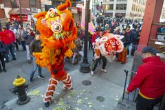 Lion Dance no bairro chinês Boston, Massachusetts, EUA fotografia de stock royalty free