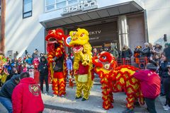 Lion Dance no bairro chinês Boston, Massachusetts, EUA imagens de stock