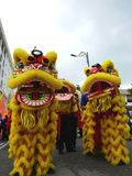 Lion dance parade. In Penang, Malaysia Royalty Free Stock Photos