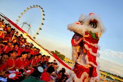 Lion dance performance during NDP 2009 stock photo