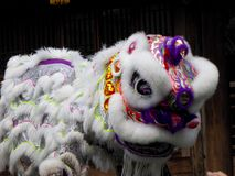 Lion dance performance Stock Images