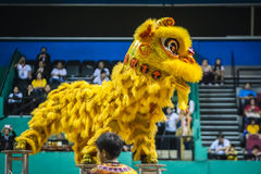 Lion Dance Royalty Free Stock Photos