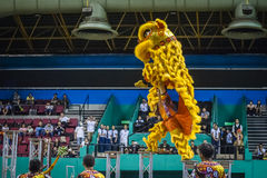 Lion Dance Stock Image