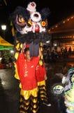 Lion dance Royalty Free Stock Photo