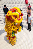 Lion dance performing vertical stance. KUALA LUMPUR, MALAYSIA - February 7 : Lion dance performing vertical stance in front spectator crowd at Tian Hou temple Stock Photography