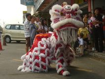 Lion Dance at Sabah Team stock photography