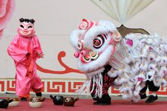 Lion dance troupe. Performers from the lion dance troupe performing Royalty Free Stock Photography