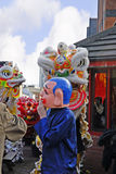 Lion Dancing Chinese New Year berömmar i Blackburn England arkivbild