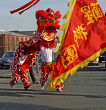 Lion Dancing Chinese New Year berömmar i Blackburn England arkivbilder