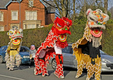 Lion Dancing Chinese New Year berömmar i Blackburn England royaltyfri foto
