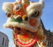 Lion Dancing Chinese New Year berömmar i Blackburn England arkivfoton