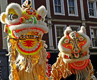 Lion Dancing Chinese New Year berömmar i Blackburn England royaltyfri fotografi