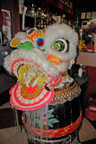 Lion Dancing Chinese New Year berömmar i Blackburn England royaltyfria bilder
