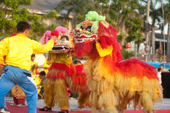 Lion dancing in Chinese New Year. Stock Images