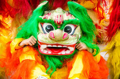 Lion dancing Royalty Free Stock Photos
