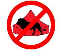 Lion dans le cirque interdit Images stock