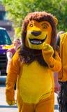 Lion de défilé Photographie stock libre de droits