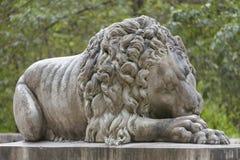 Lion de gardien Images stock