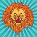 Lion de grimace Images libres de droits