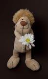 Lion de jouet Images stock