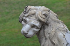 Lion de marbre Photos stock