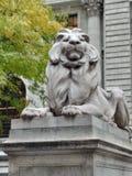 Lion de NYPL image stock