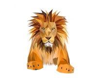 lion de roi Photographie stock