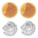 Lion de silhouette en soleil Image stock