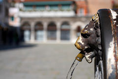 Lion de Venise, St Mark Images libres de droits