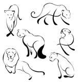 Lion Design Set Royalty Free Stock Photos