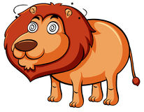 Lion with dizzy face Royalty Free Stock Photography