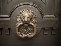 Lion on the door Royalty Free Stock Photography