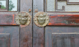 Lion door Stock Photo
