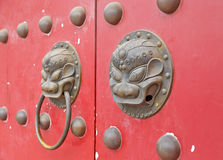 Lion door Royalty Free Stock Photography