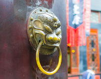 Lion door Stock Photography