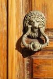 Lion door knocker Stock Image