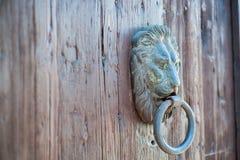 Lion door knocker Stock Photography