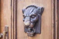 Lion door knocker Stock Images