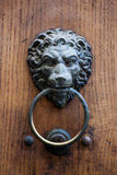 Lion door knocker Royalty Free Stock Photos