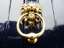 Lion door knocker navy blue golden paint Royalty Free Stock Photography