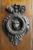 Lion door knocker Stock Photos